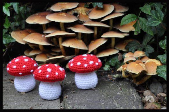 paddenstoel haken
