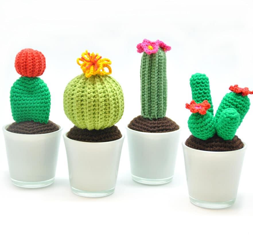 cactus haken